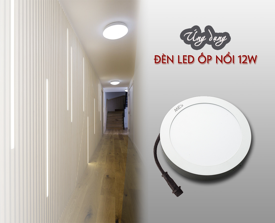 ĐèN LED ốp nổi 12W